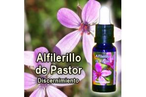 ALFILERILLO DE PASTOR ESENCIA TRIUNIDAD 15ML (PHYTOVIT)