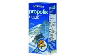 PROPOLIS LIQUID (YNSADIET)